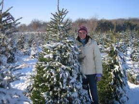 kidlist activities for little kids christmas tree farms