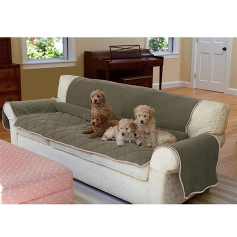 dog settee sofa sofa cover dog thesofa