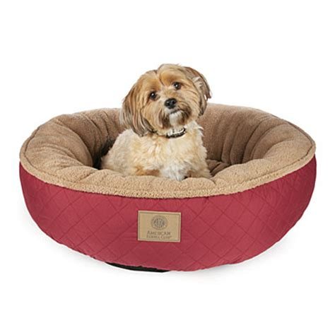 big lots dog beds view akc large quilted dog bed deals at big lots