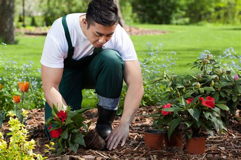 what type of gardener are you eieihome