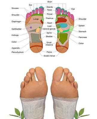 Bodytox Detox Foot Patches Do They Work by Foot Detox Ultimate Bodytox
