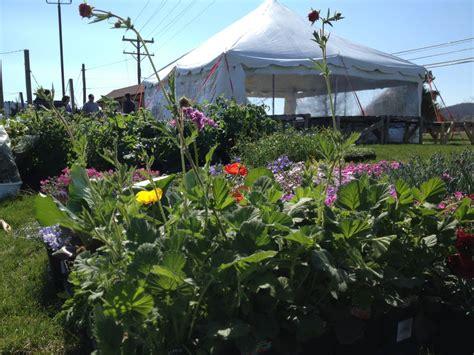Garden Center Hagerstown Md Garden Center Hagerstown Md 28 Images Rocket Launch