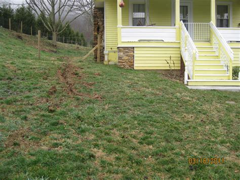 backyard slopes toward house backyard slopes toward house backyard slopes away from