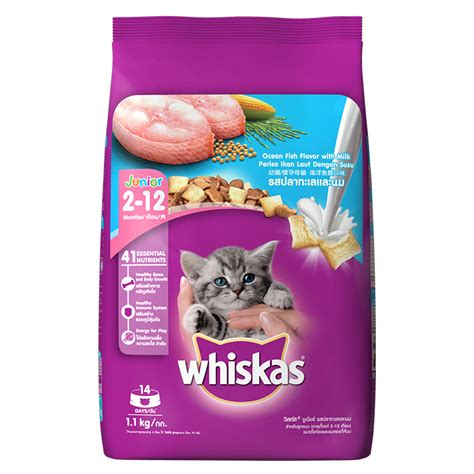 whiskas junior fish kitten food 1 1 kg dogspot