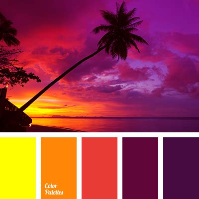 sunset color tropical purple pink orange and yellow color