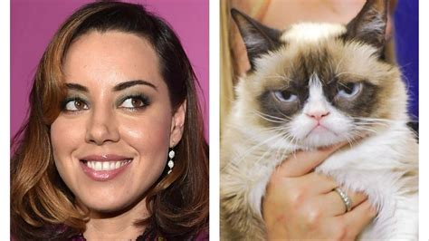 cat voice plaza will voice grumpy cat because sometimes we
