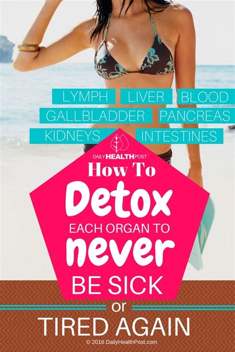 How To Detox Iron From Your by How To Detox Each Organ To Never Be Sick Or Tired Again