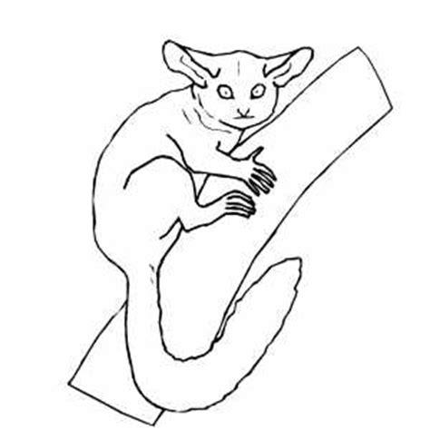 mouse lemur coloring page lemur coloring page getcoloringpages com