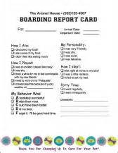 report cards mbs communications veterinary and pet care