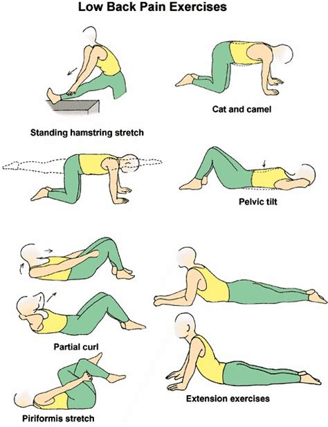 exercises to strengthen back for seniors diet plans to