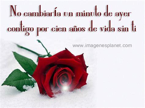 imagenes de rosas rojas con frases de amor frases de amor con rosas rojas con movimiento imagenes y