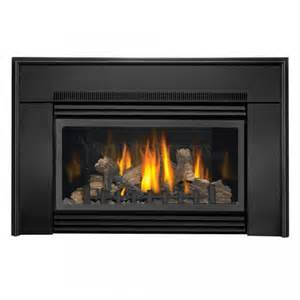 Direct Vent Gas Fireplace Insert Napoleon Gdi 30n Flush Direct Vent Gas Fireplace Insert