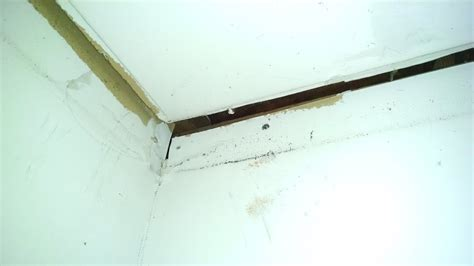 gap between and wall how to fill gap in drywall between wall and ceiling