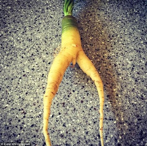 vegetables like woolworths customer finds an shaped carrot in a bag