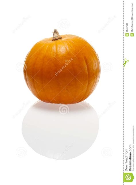 are pumpkins edible edible pumpkin ready to ope royalty free stock