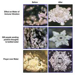 negative energy experiment world water day water energy conciousness dr masaru emoto yoga travel tales i tera kaur