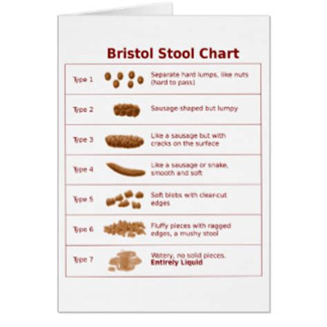 bristol stool chart gifts t shirts posters other