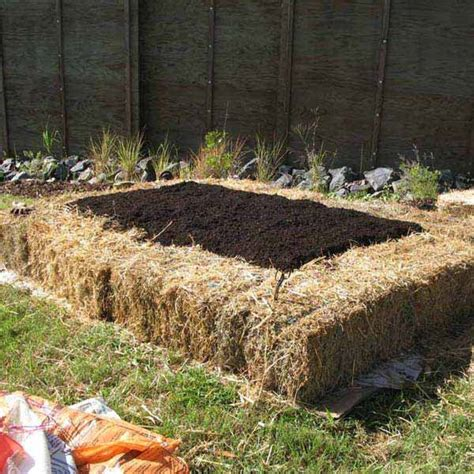 Garden Bed Edging Ideas Top 28 Surprisingly Awesome Garden Bed Edging Ideas Amazing Diy Interior Home Design