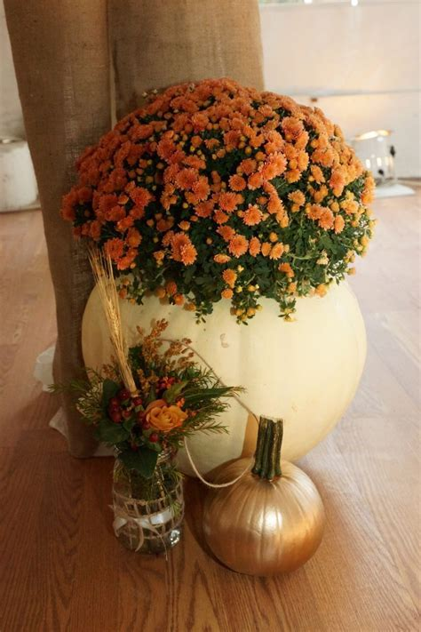 Fall Wedding Decor large cleaned out pumpkin with a