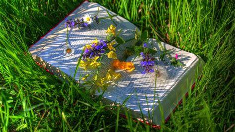 libri giardino quot libri in giardino quot alla memo nuovo ciclo di letture per