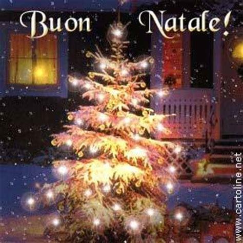 alberi di natale illuminati tanti auguri con l albero di natale illuminato