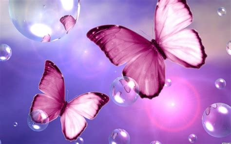 Butterfly And Beautiful Flowers Wallpapers Beautiful Pink Butterfly Wallpaper Pink Flower Wallpapers