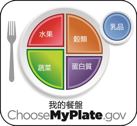 nutrition guides myplate usda and dr weils anti inflammatory food choose myplate food guide 28 images goodbye food