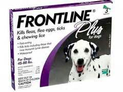 frontline plus for dogs reviews frontline plus for dogs review
