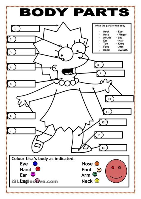 coloring pages for esl students body parts english pinterest body parts