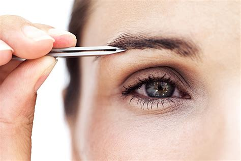 The Of Groomed Brows by Grooming Tips For Eyebrows From Youbeauty
