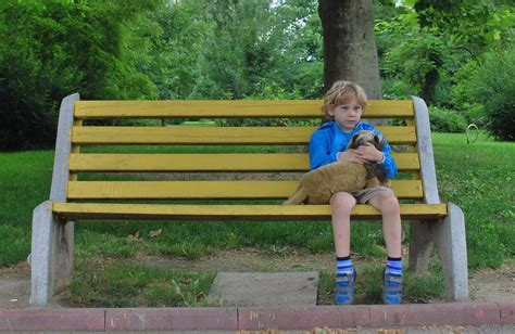 sad bench free photo boy alone sitting bench toy free image