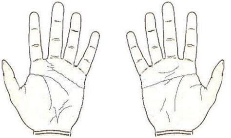 Finger Jari Tangan Terlaris 10 jari tangan saripedia