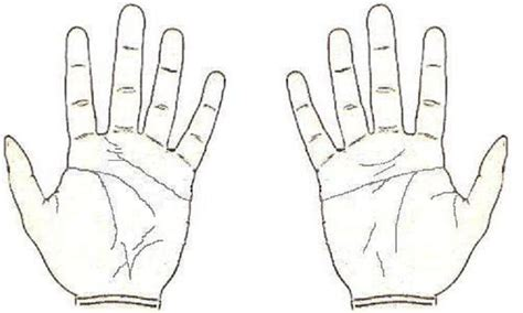 gambar tato tangan kartun 10 jari tangan saripedia com