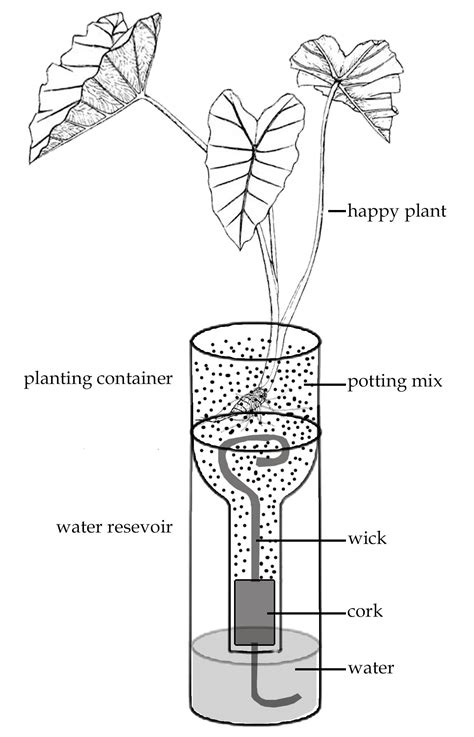 how do self watering planters work use and care of self watering planters fabled beggar
