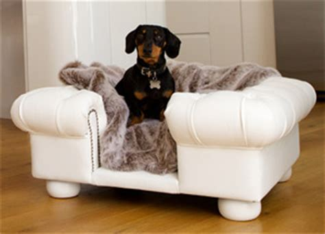 leather sofa with dogs balmoral white faux leather dog sofa bed
