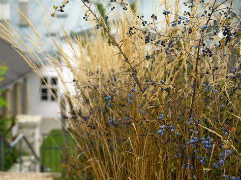 Englischer Garten Heldenberg by Englischer Garten Heldenberg Willkommen Auf Natur Im Garten