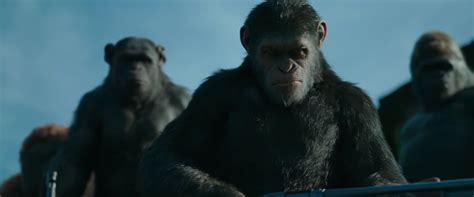 of the planet of the apes jacob s top 10 most anticipated of 2017