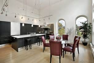 contemporary kitchen cabinets pictures and design ideas