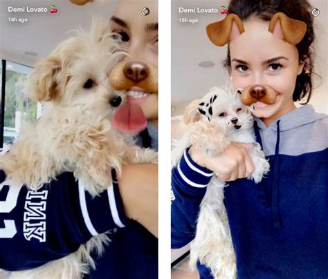 demi lovatos dogs tragic death new details about what demi lovato adopts new puppy