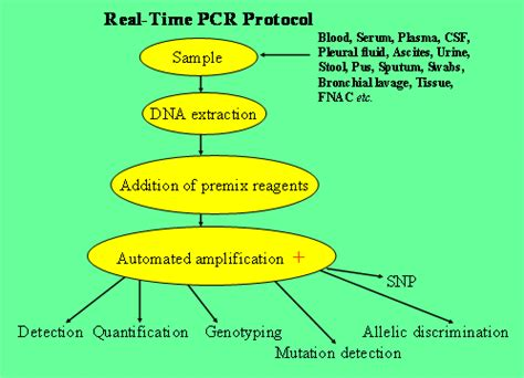 real time pcr genome diagnostics pvt ltd