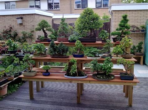 bonsai bench pdf diy bonsai display bench plans download bookshelf tv