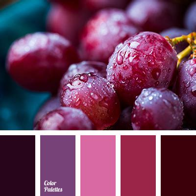 rasberry color color of raspberry color palette ideas