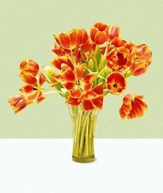 Aspirin In Flower Vases by 1000 Images About Tip S To Make Fresh Last Longer On