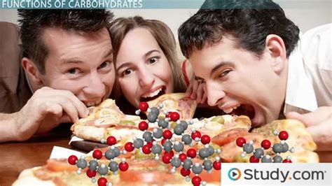 carbohydrates deficiency the importance of carbohydrates functions impact of