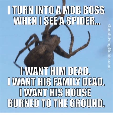 I Saw A Spider Meme - 25 best memes about when i see a spider when i see a