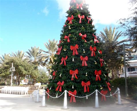 christmas trees will be lit up next week at all three town