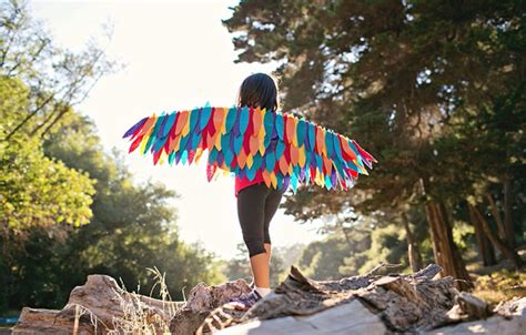 wonderful diy rainbow bird wing costume