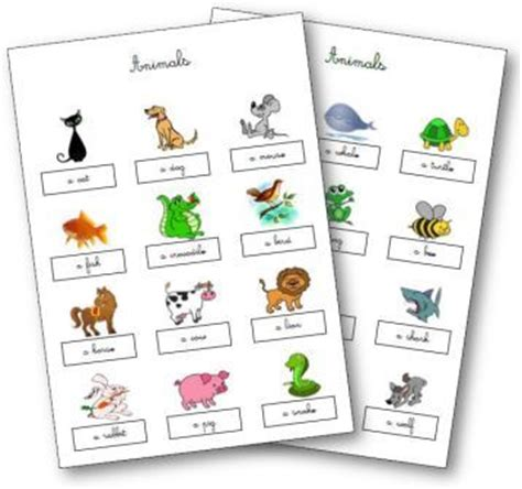 Traduction Banc En Anglais by Ressources Anglais Cycle 2 Et 3 Flashcards Anglais Maternelle