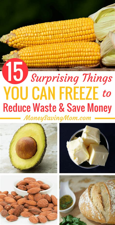 Mba Education Is A Waste Of Money Extempore by 15 Things You Didn T You Could Freeze