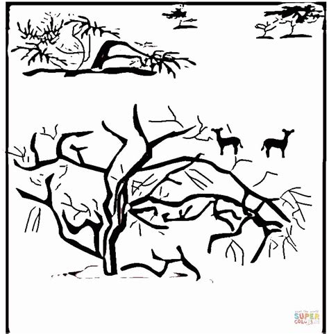 savanna coloring pages coloring home